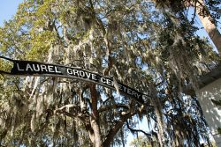 Laurel Grove Cemeter(ies)