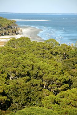 Hunting Island State Park and the Saga of Seventeen Splinters