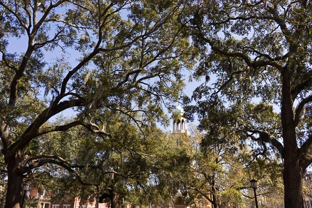 03 Monterey Square Savannahfor91days.com