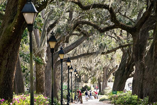 04 Forsyth Fountain Parkfor91days.com