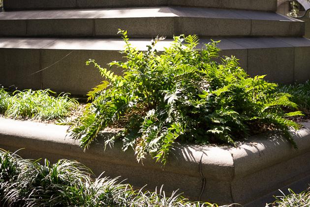 05 Wright Square Savannahfor91days.com