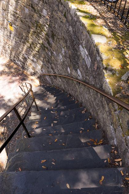 08 Savannah River Streetfor91days.com