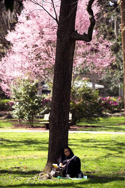 14 Forsyth Fountain Parkfor91days.com