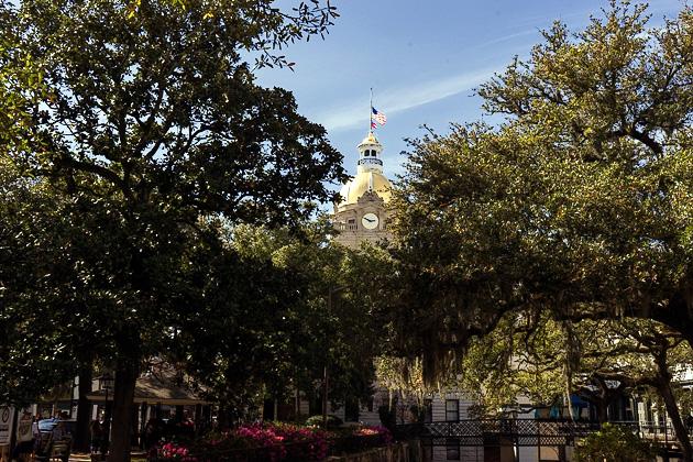 31 Savannah River Streetfor91days.com