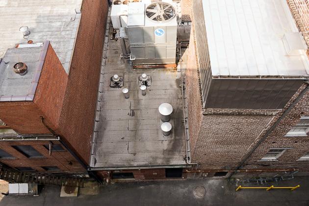 34 Stock Photos Savannahfor91days.com