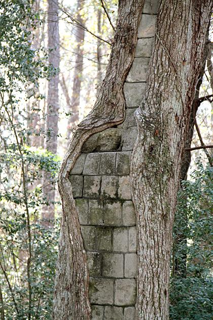 Brick Filled Tree