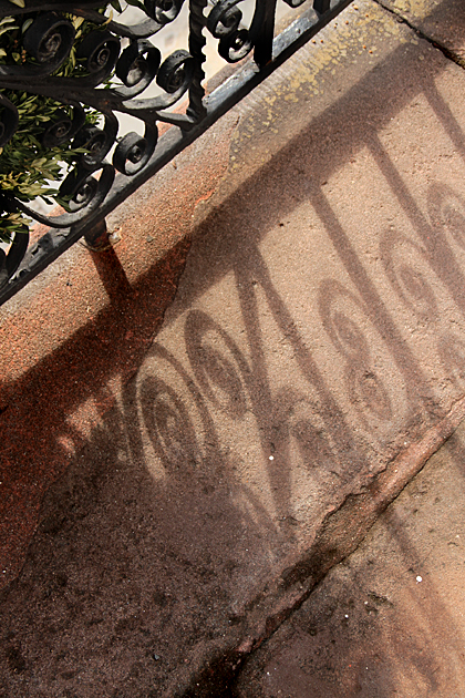 Detail Savannah