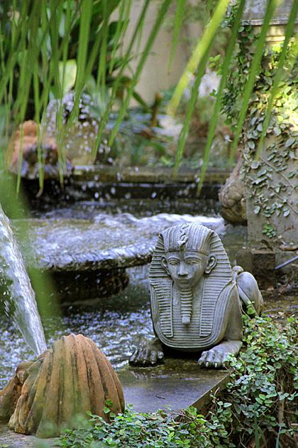 Egypt Savannah