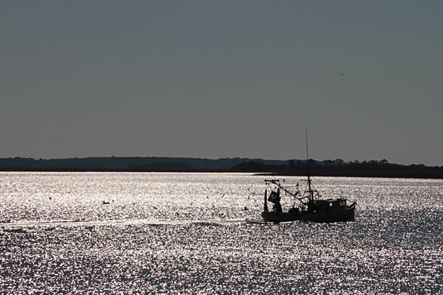 Fishing Hunting Island