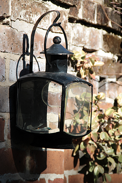 Light Design Savannah