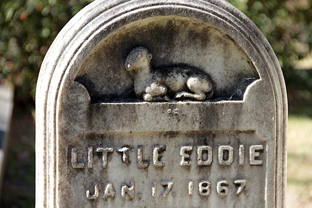 Little Eddie