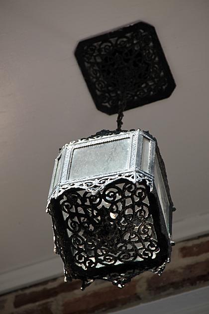 Oriental Lamp Savannah