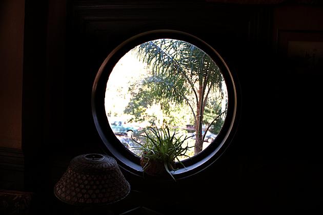 Round Window Savannah