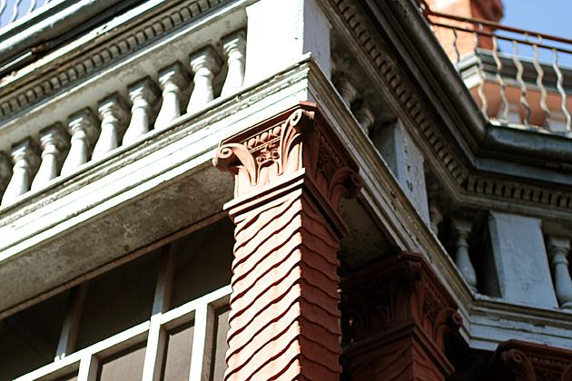 Savannah Detail 1