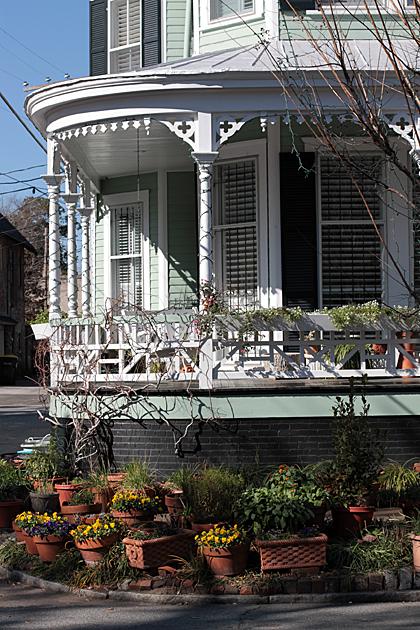 Savannah Gardening