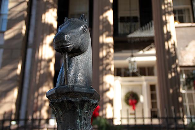 Savannah Iron Horse