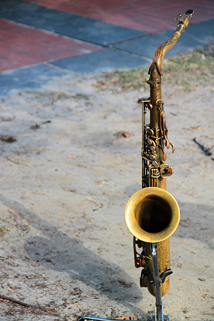 Savannah Jazz 2