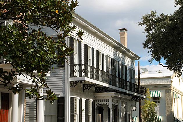 Savannah Squares 1