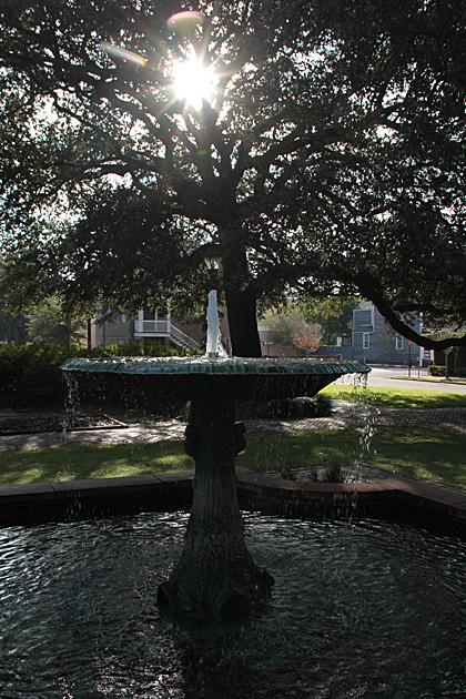 Savannah Squares 3