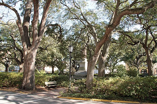 Savannah Squares 7