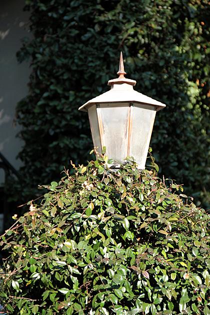 Sneaky Lamp