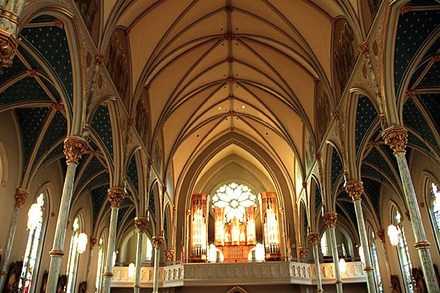 cathedral savannah 1